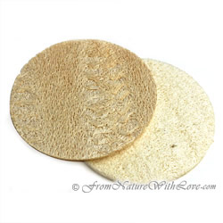 Large Loofah Disc
