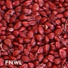 Cranberry Fruit Seeds