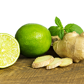 Fresh Ginger Lime BBW Type Fragrance Oil
